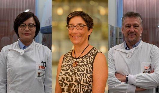 Dr Bijun Zeng, Professor Ranjeny Thomas, Professor Riccardo Dolcetti