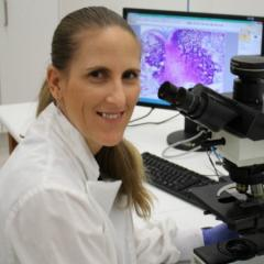 Image of Associate Professor Allison Pettit