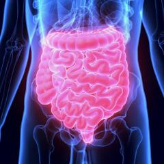 Changes in the gut have been linked to type 1 diabetes.