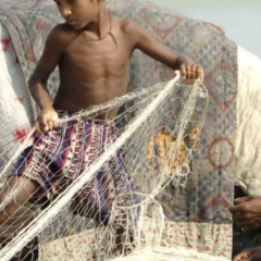 In Bangladesh, people are eating more  fish but getting less nutrition from it. Mufty Munir/EPA