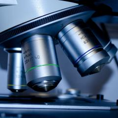 University of Queensland researchers receive NHMRC funding