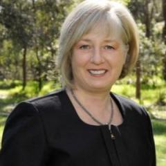Professor Carolyn Mountford will be the new TRI CEO from February 2015.