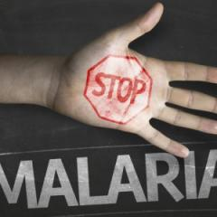 Declaration commits to eradicating malaria in the Asia Pacific.