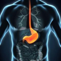 The incidence of oesophagael cancer is increasing, particularly among obese men with reflux (heartburn) and a history of smoking.