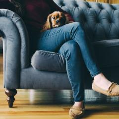 Image of woman with dog sitting on a couch.